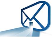 Mind Sciences Network Newsletter