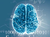 great-courses_neuroscience